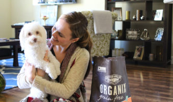 Why we made the switch to organic pet food for our little dog