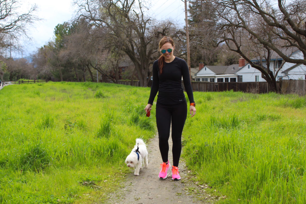 Dogs make you healthier with walks by A Lady Goes West