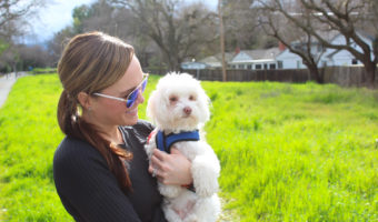 Five reasons having a dog is good for your health