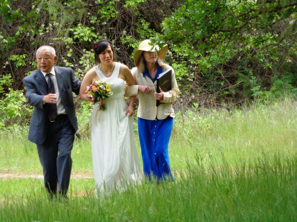 Wedding at Hendy Wood State Park