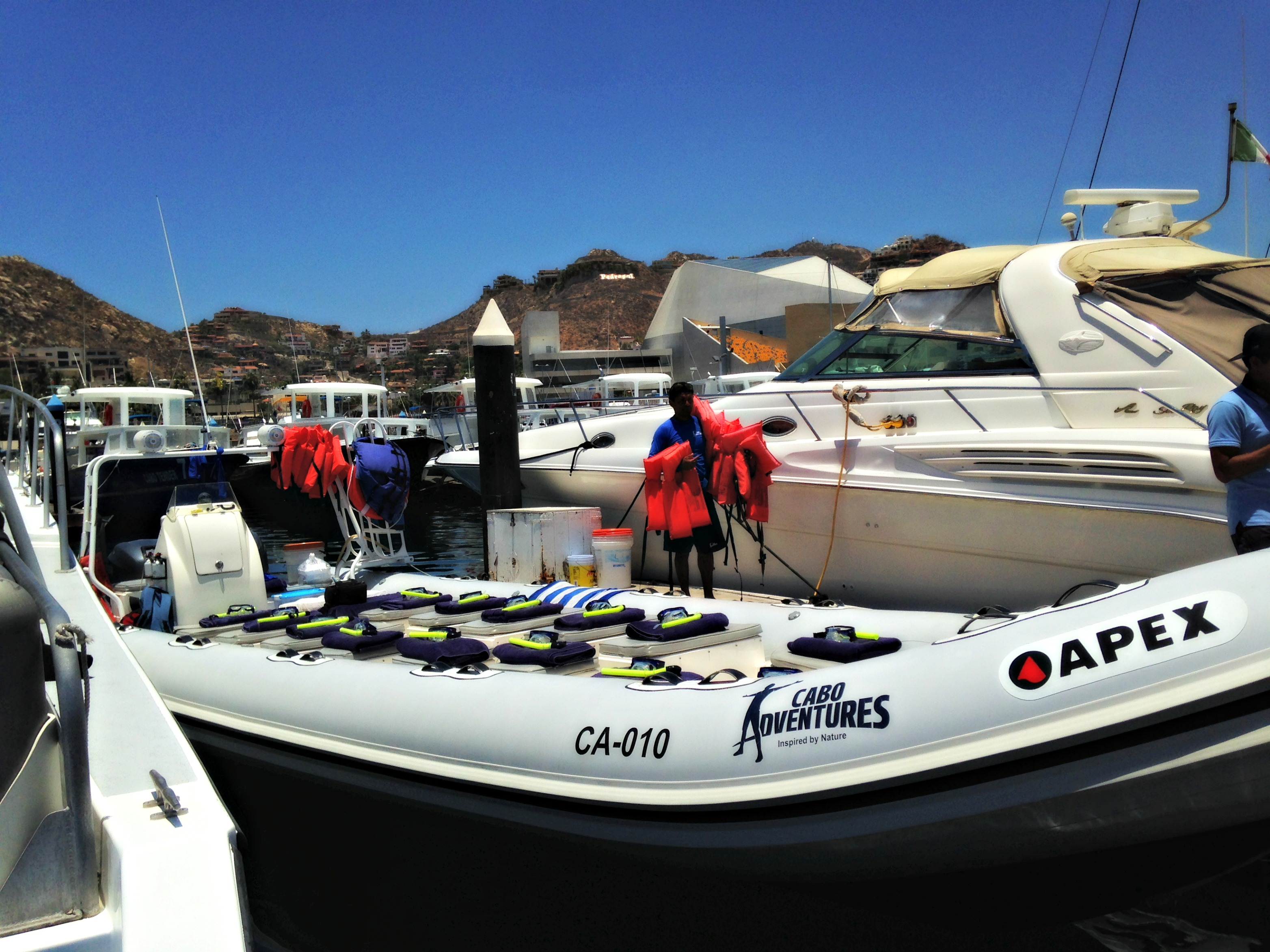 PB Cabo Adventures snorkel boat