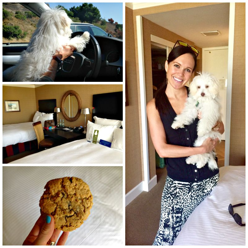 Roadtrip to the Portola Hotel and Spa via A Lady Goes West blog