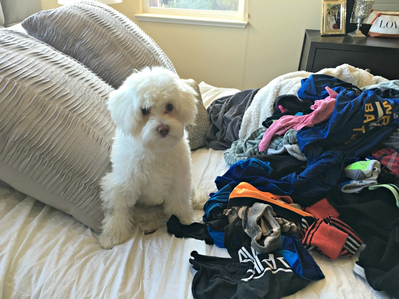Rudy helping with the laundry via A Lady Goes West