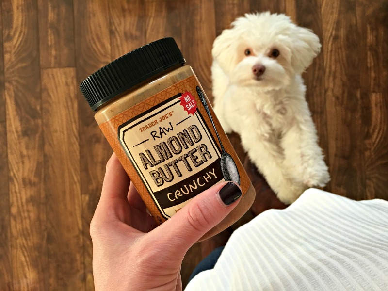 Almond butter and Rudy via A Lady Goes West