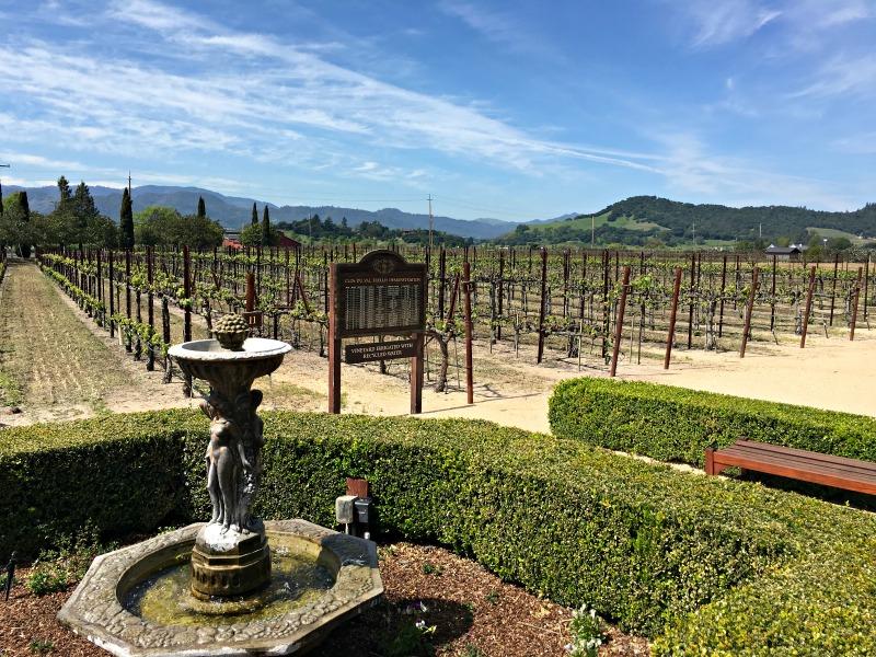 Clos du Val winery in Napa