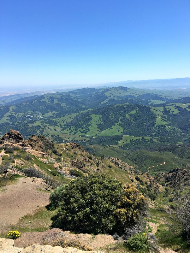 How to celebrate Earth Day by A Lady Goes West