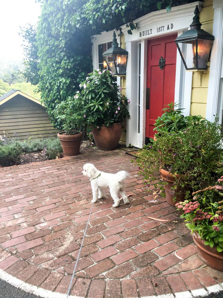 Rudy at Heritage House by A Lady Goes West