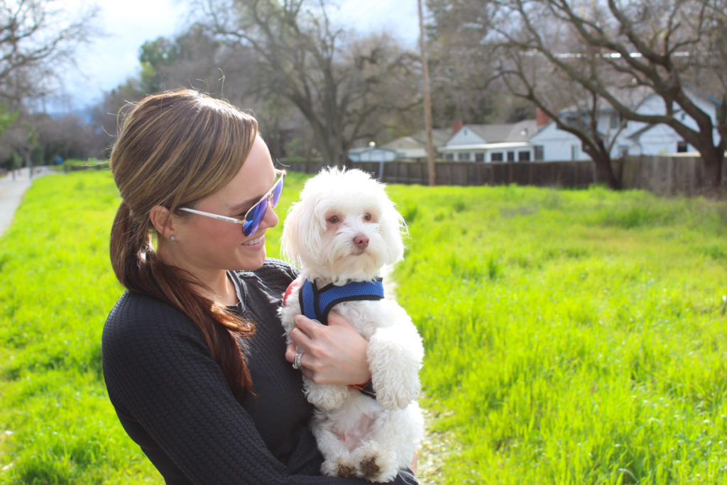 Five ways dog help you to be healthy by A Lady Goes West