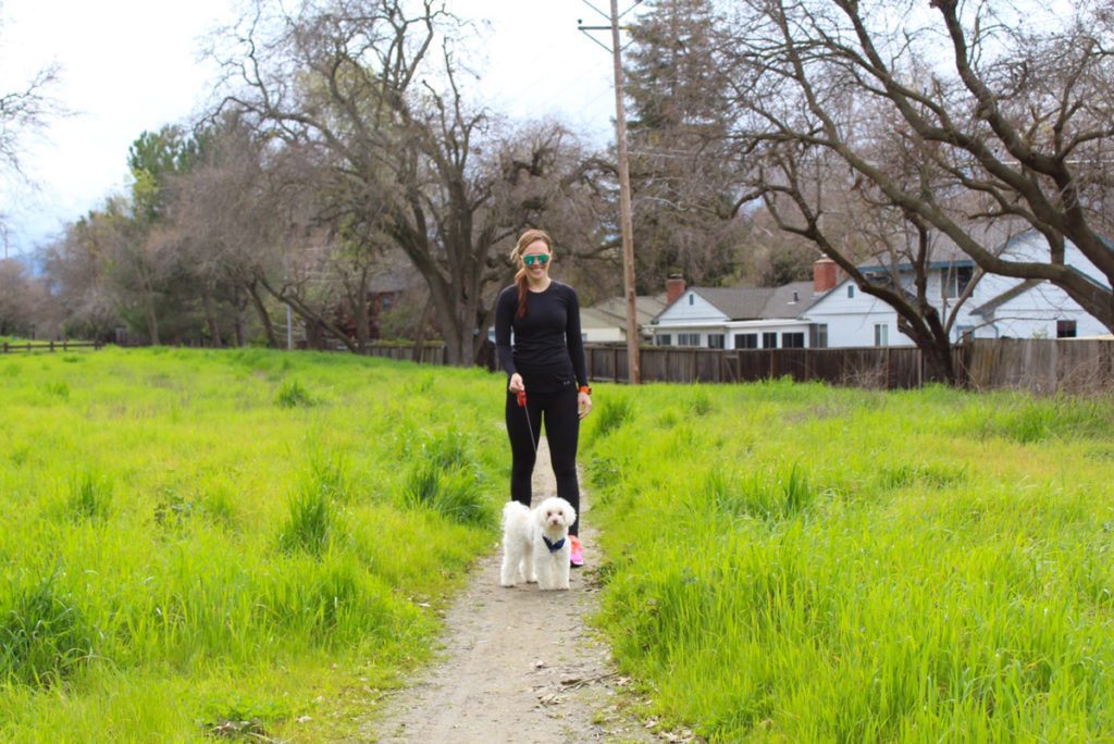 Five ways dogs make you healthier on a walk by A Lady Goes West