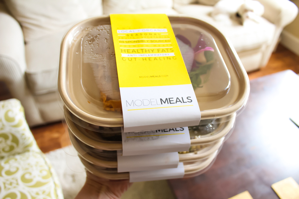 Model Meals delivery by A Lady Goes West