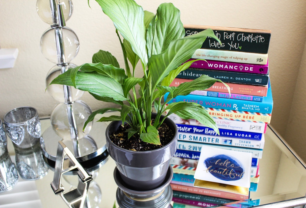 Peace Lily plant for the bedroom by A Lady Goes West