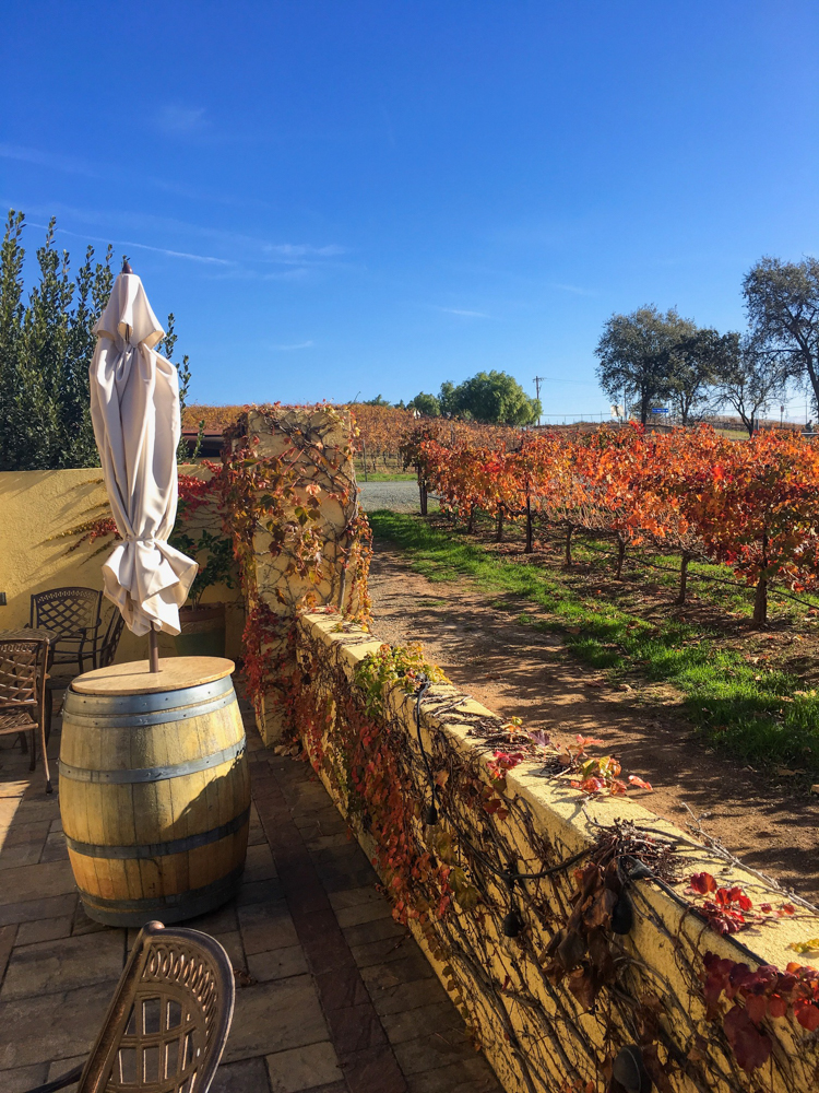 Las Positas in Livermore Valley by A Lady Goes West