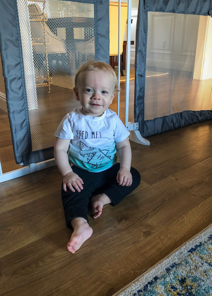 Brady at 1 year in playroom in October 2018 - A Lady Goes West