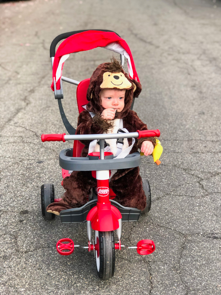 Brady in his monkey costume for Halloween by A Lady Goes West -- October 2018