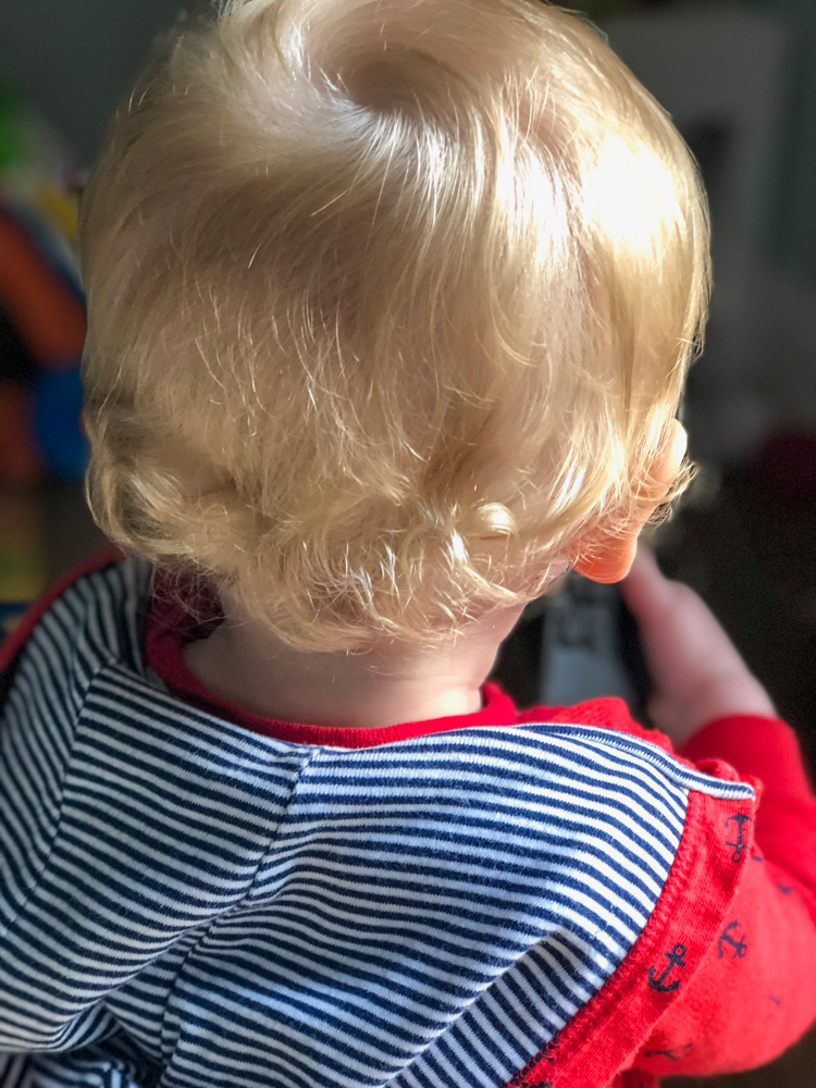 Brady's curls by A Lady Goes West -- November 2018