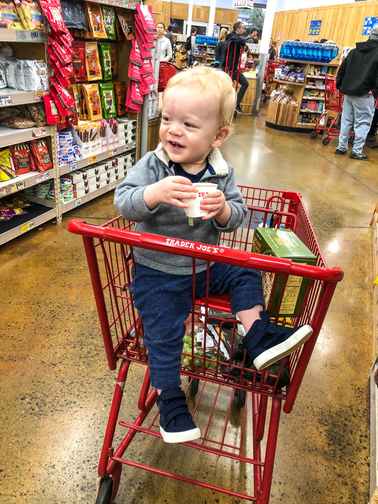 Brady at Trader Joe's by A Lady Goes West -- January 2019