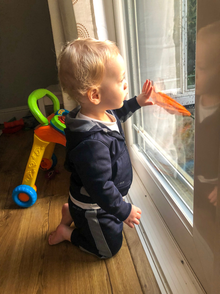 Brady looking out the window by A Lady Goes West -- Brady's 16-month update