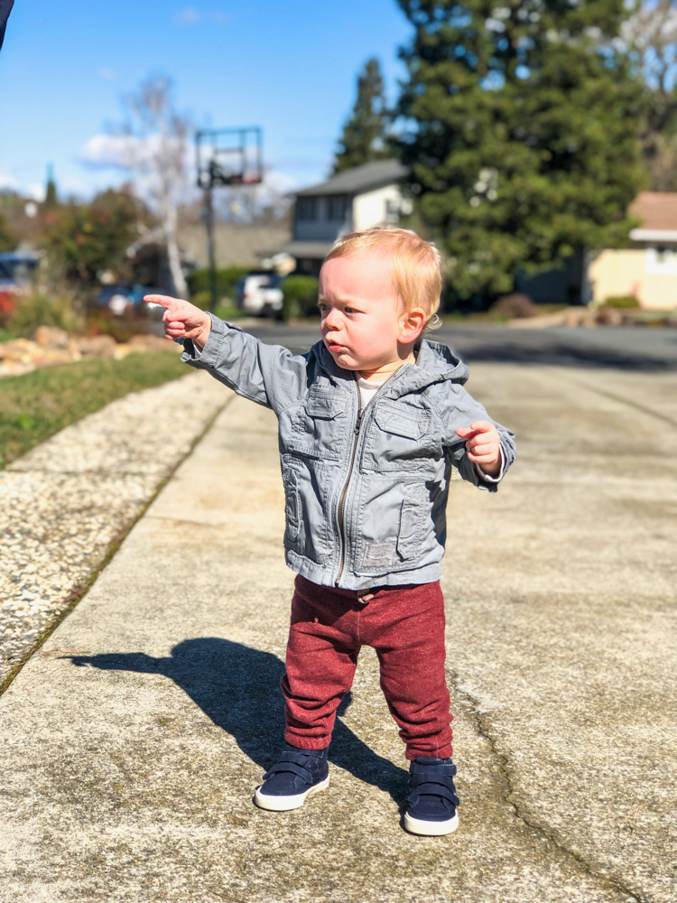 Brady on the driveway by A Lady Goes West - February 2019