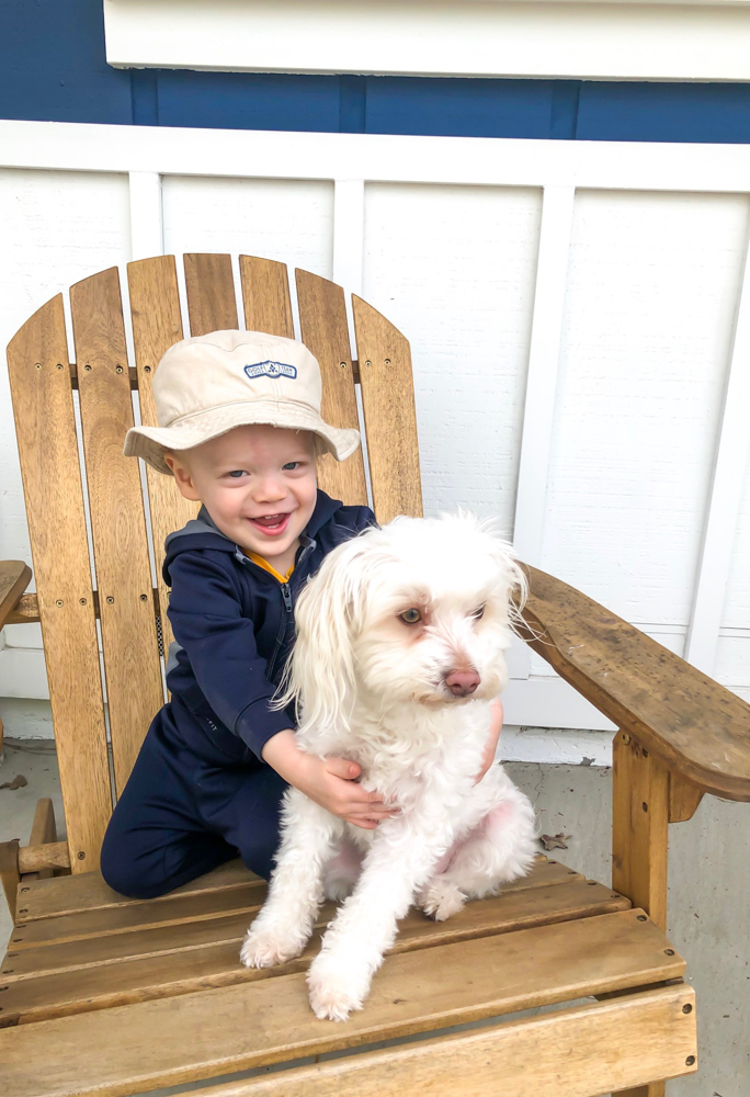 Brady and Rudy on the chair by A Lady Goes West - May 2019
