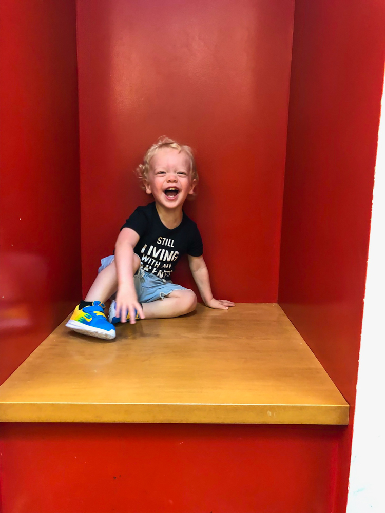 Brady at the library in WC -- A Lady Goes West - August 2019