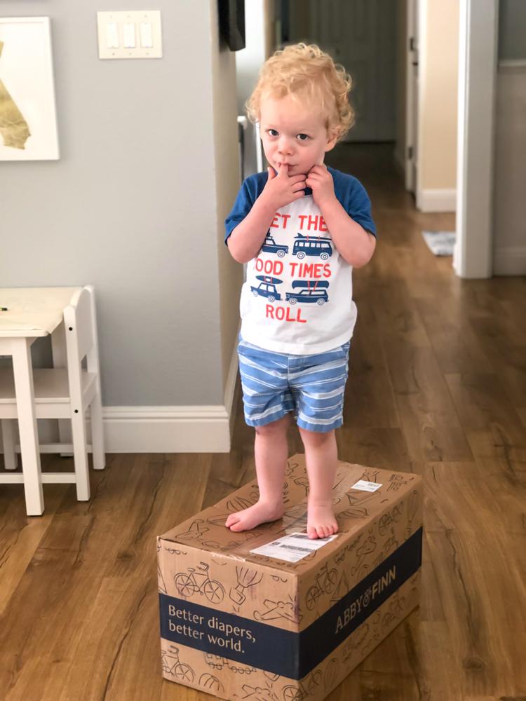 Brady on a diaper box 2019 by A Lady Goes West
