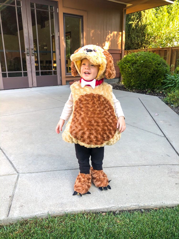 Brady Halloween at 2 years old by A Lady Goes West -- October 2019