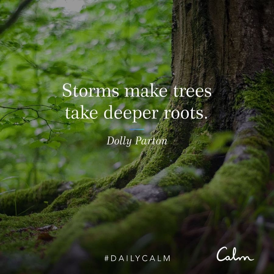Dolly Parton CALM quote