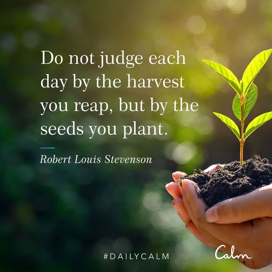 Harvest quote by Calm