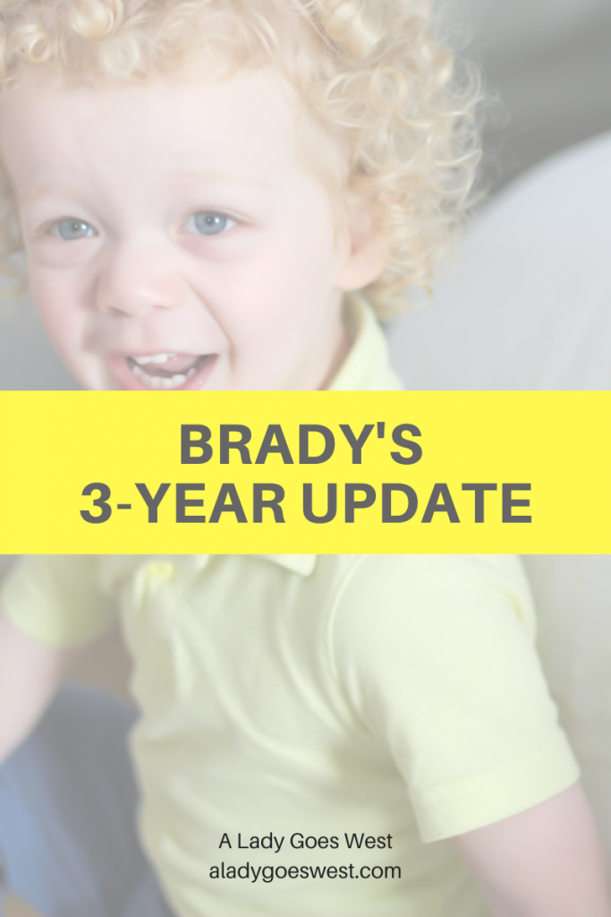 Brady's 3-year update by A Lady Goes West
