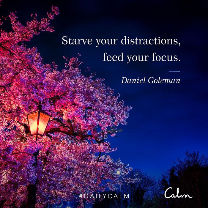 Starve your distractions quote by A Lady Goes West
