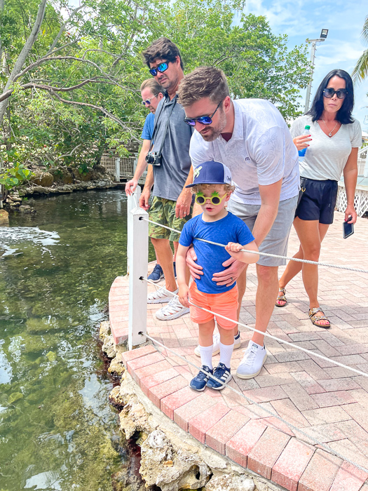 Brady at Theater of the Sea in Islamorada by A Lady Goes West