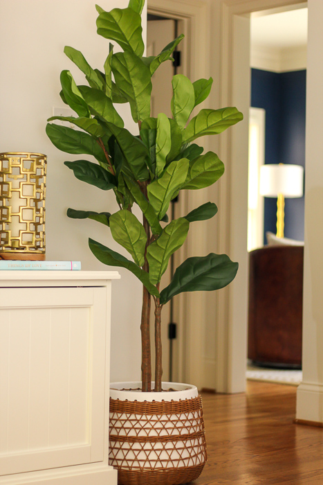 Fiddle leaf fig by A Lady Goes West